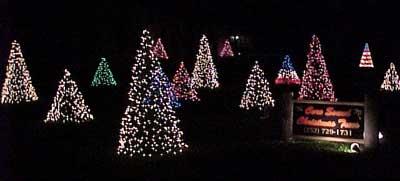 "Crab Pot Christmas Trees – A True ""Down East"" Innovation | Mariner's Menu"