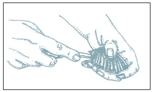 open-scallops-1